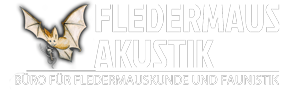 Logo Fledermaus-Akustik